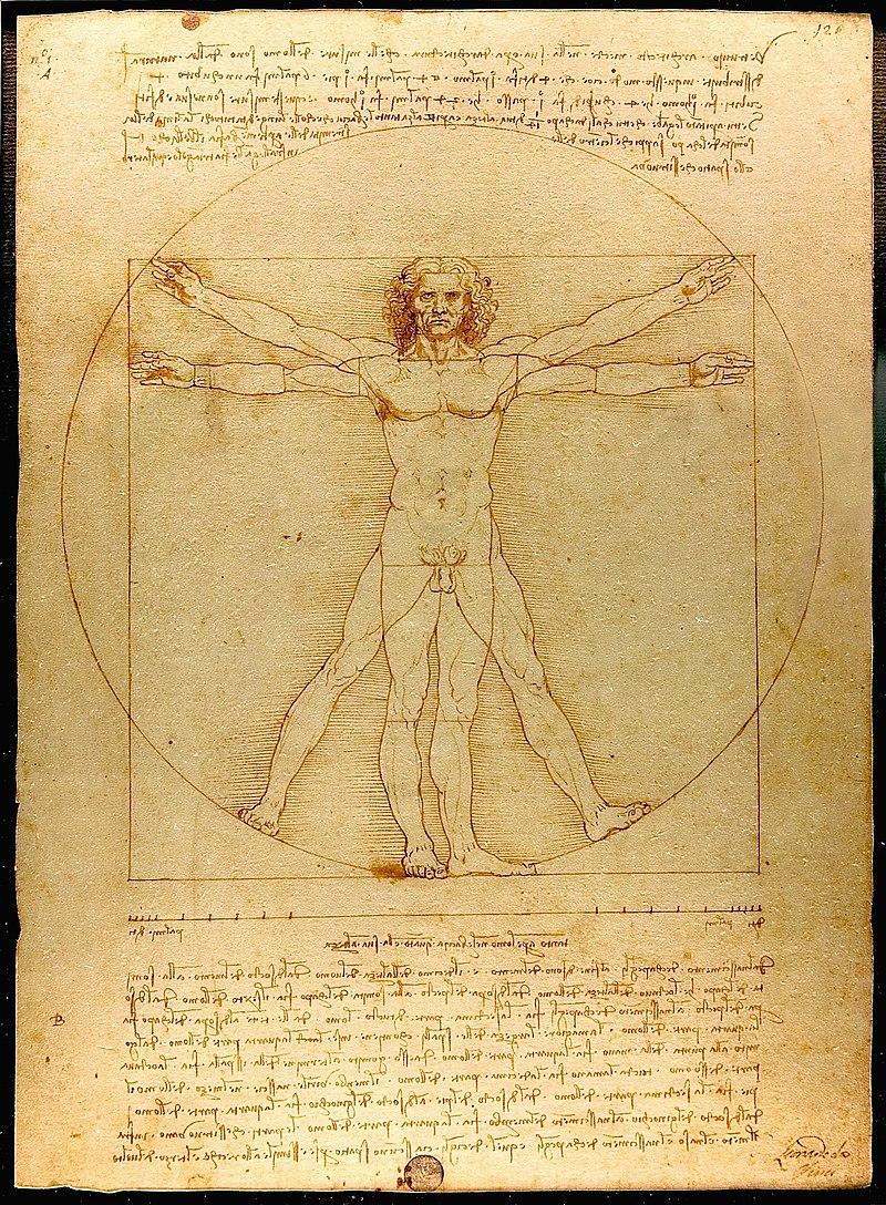Człowiek witruwiański Leonardo da Vinci